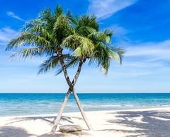 egyetlen nyaralás beleszeretni)